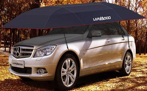 Como proteger seu carro contra os danos causados por folhas caídas?